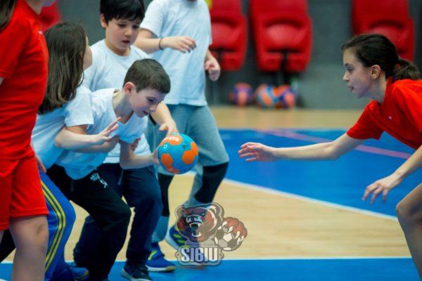 sala_transilvania_handbal2